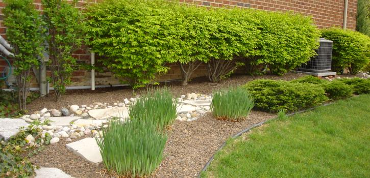 landscaping example