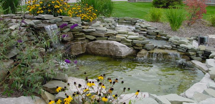 Brighton mi pond installation 3d design group for Garden pond installers